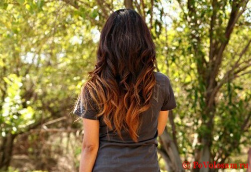 омбре окрас волос