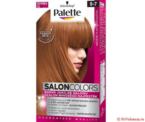 Палет Salon Colors