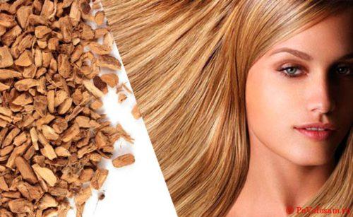 Корень аира для роста волос