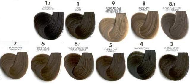 разновидности краски